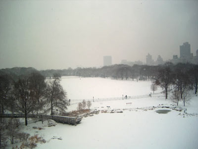 central park snow nyc